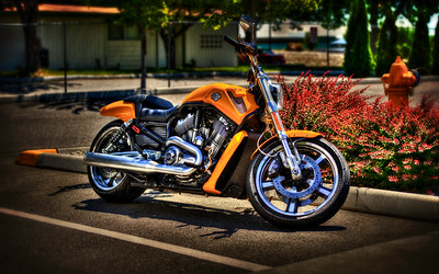 yellow harley hd