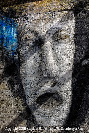 Face on the Wall Copyright 2019 Steve Leimberg UnSeenImages Com _Z2A7996