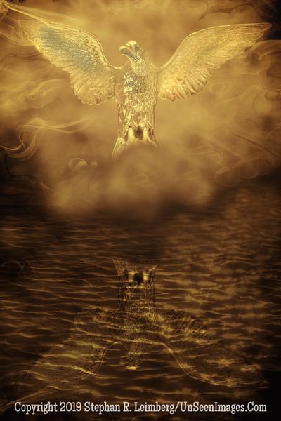 American Eagle xxx - Copyright 2015 Steve Leimberg - UnSeenImages Com _H1R2882