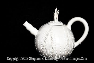 Lis Krawiecki - White Teapot - Copyright 2016 Steve Leimberg - UnSeenImages Com  2016-10-17 22-57-05 (A,Radius8,Smoothing4)