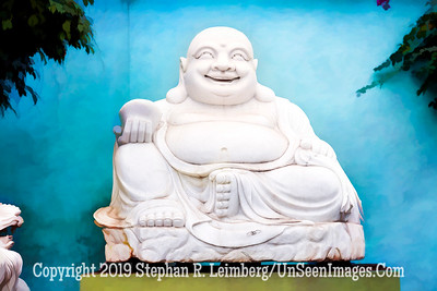 White Buddah - PAINTING - Copyright 2018 Steve Leimberg UnSeenImages Com _Z2A3676