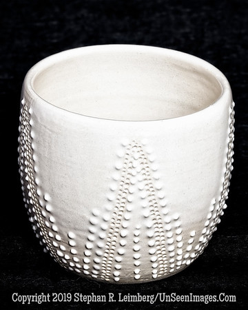 Lis Krawiecki - White Cup - Copyright 2016 Steve Leimberg - UnSeenImages Com 2016-10-17 22-32-09 (A,Radius8,Smoothing4)