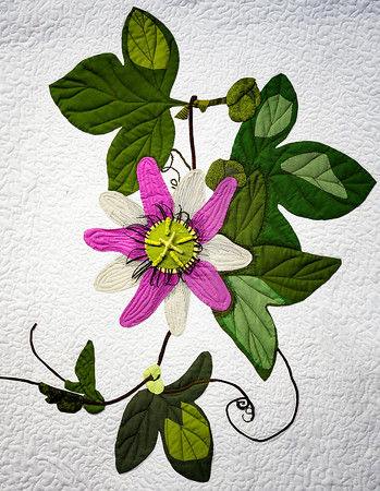 Flower Quit Copyright 2020 Steve Leimberg UnSeenImages Com _DSF7900-Exposure