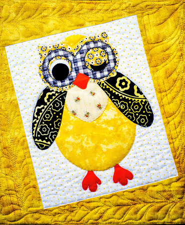 Owl Quilt Copyright 2 020 Steve Leimberg UnSeenImages Com _DSF7921-Exposure