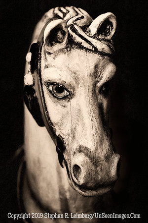 Rocking Horse Winner - B&W Copyright 2016 Steve Leimberg - UnSeenImages Com _Z2A4437