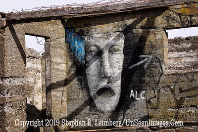 Face on the Wall Copyright 2019 Steve Leimberg UnSeenImages Com _Z2A7992