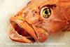 Big Fish - Copyright 2017 Steve Leimberg UnSeenImages Com _DSF9013