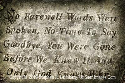 No Farewell Words - Bosque Bello Cemetery - Copyright 2019 Steve Leimberg - UnSeenImages Com _H1R8200