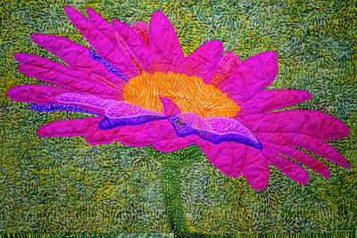 Flowers Amelia Island Quiting Show Copyright 2020 Steve Leimberg UnSeenImages Com_DSF7904
