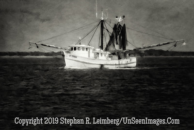 Nets Out VII - B&W Copyright 2014 Steve Leimberg - UnSeenImages Com IMG_1758