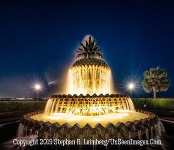 Pineapple Fountain Charlestown  Copyright 2018 Steve Leimberg UnSeenImages Com_DSF5573