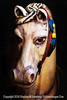 Rocking Horse Winner - Copyright 2016 Steve Leimberg - UnSeenImages Com _Z2A4437