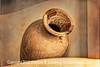 Columbian Pottery - Copyright 2016 Steve Leimberg - UnSeenImages Com _M1A7819