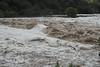 IMG_2973 - Pedernales Falls Flooding-01