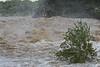 IMG_3024 - Pedernales Falls Flooding-01