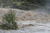 IMG_3020 - Pedernales Falls Flooding-01