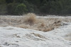 IMG_3041 - Pedernales Falls Flooding-01
