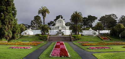 SF COnservatory of FLowers-Edit