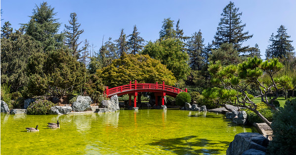 Japanese_Friendship_Garden_Pano_Photoshop_Auto_