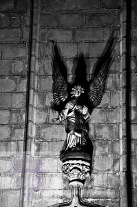Angels Among Us, The Cathedral of Barcelona
