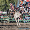Ranch Saddle Bronc - 1