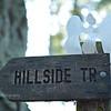 Angel on Hillside Trail