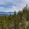 - Limpy Botanical Trail