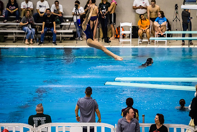 2018 UIL 5A State Swimming & Diving Championship-14