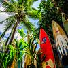 Surfboard Graveyard
