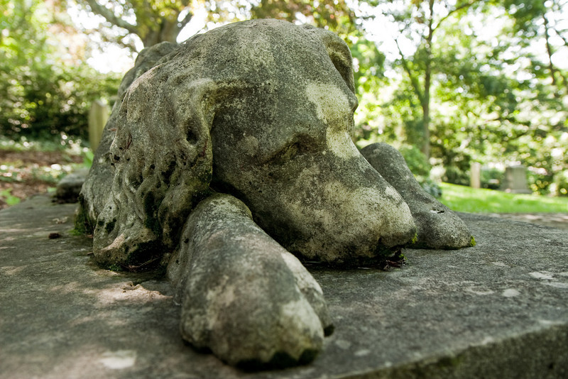 Sleeping Dog, Mt. Auburn Cemetery, Cambridge MA