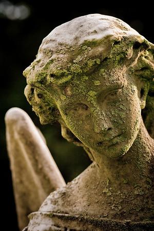 Stone Angel, Cemetery Concord MA