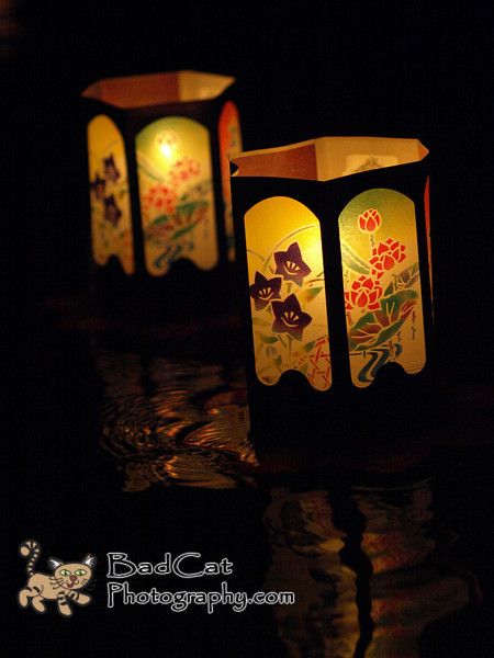 Floating lanterns, Haleiwa Jodo Mission Obon 2008.