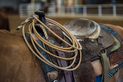 Rope on Saddle Horn