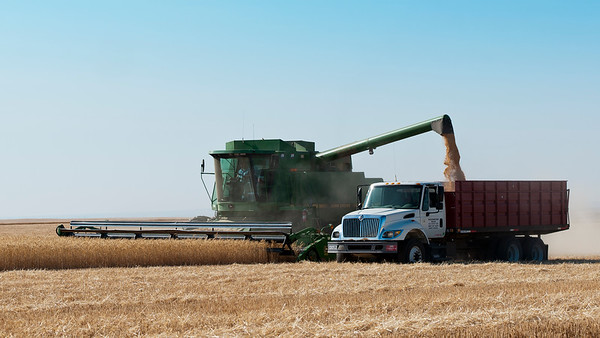 farm truck2