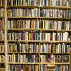 Birchbark Bookstore near Parishville, NY