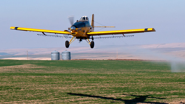 crop duster bee line closer