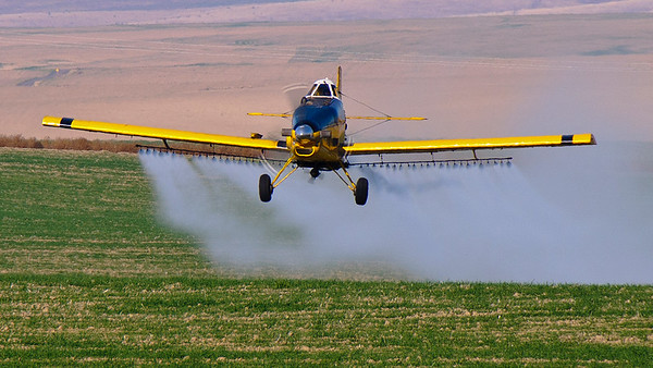 Crop Duster closeup front
