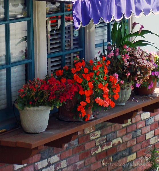 Mimi's Cafe, Whittier, CA