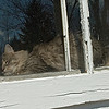 "Blissful in the warmth of the spring sunshine, a neighbor's cat takes a nap.  I call this ""Feng Shui"", the title of the book on the sill, and no, I didn't set this up, I just happened to see it!"