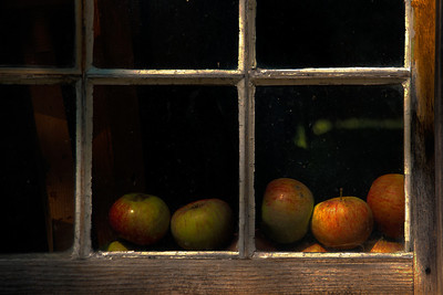 "Titled ""After the Fall"", this window shot also won 3rd Place in the Frederic Remington Art Museum Juried Members Show."