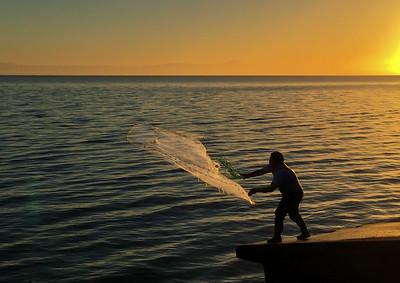 One net,  many fish