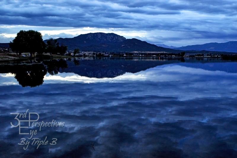 Beauty in the Dark - Aguanga, California - USA