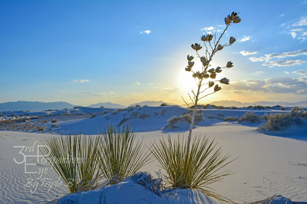 White Magic - White Sands Nat'l Monument, New Mexico - USA