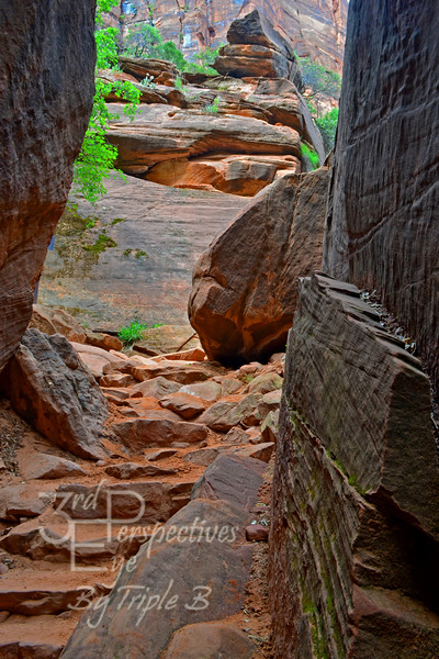 Red Path Zion