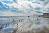 Morning Magnificence - Daytona Beach, FL