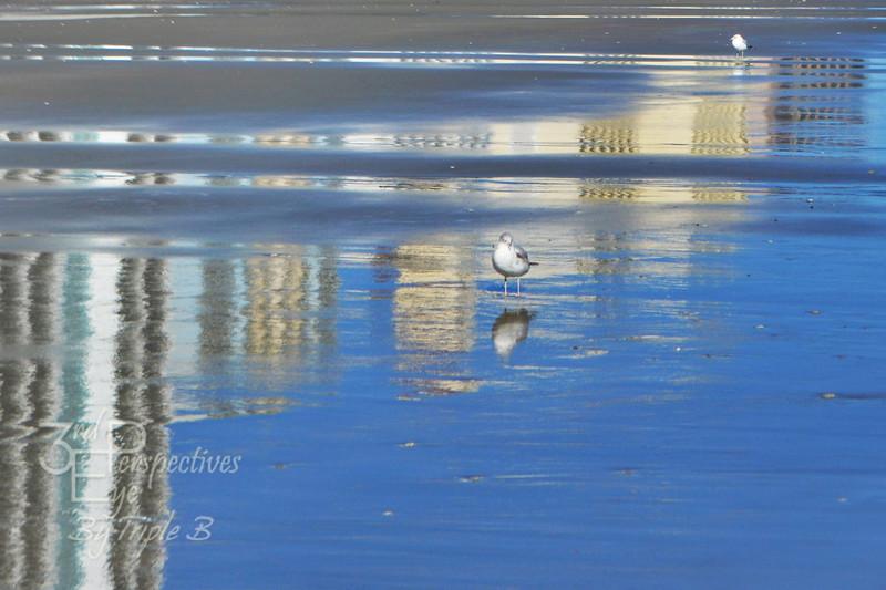Solitude - Myrtle Beach, SC