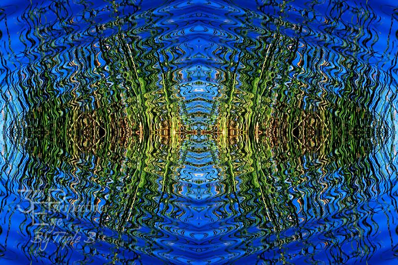 Frequency - Aguanga, California - USA