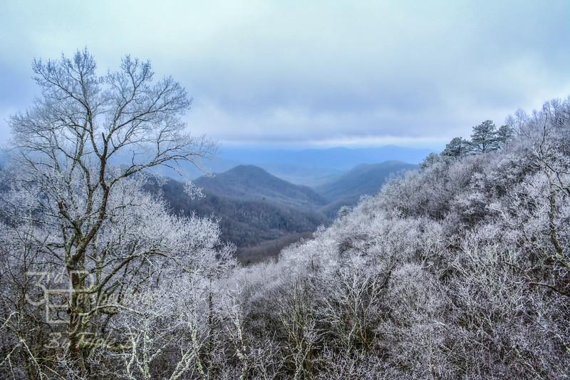 Picture Perfect - Cherohola Skyway, North Carolina - USA
