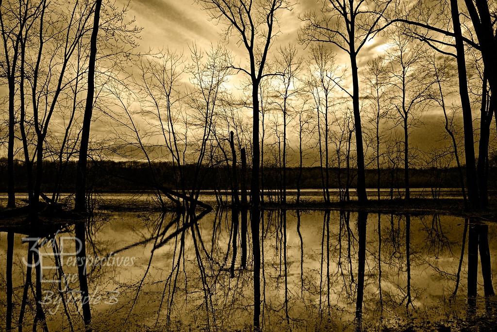 Winter Silence - Dayton, Ohio - USA