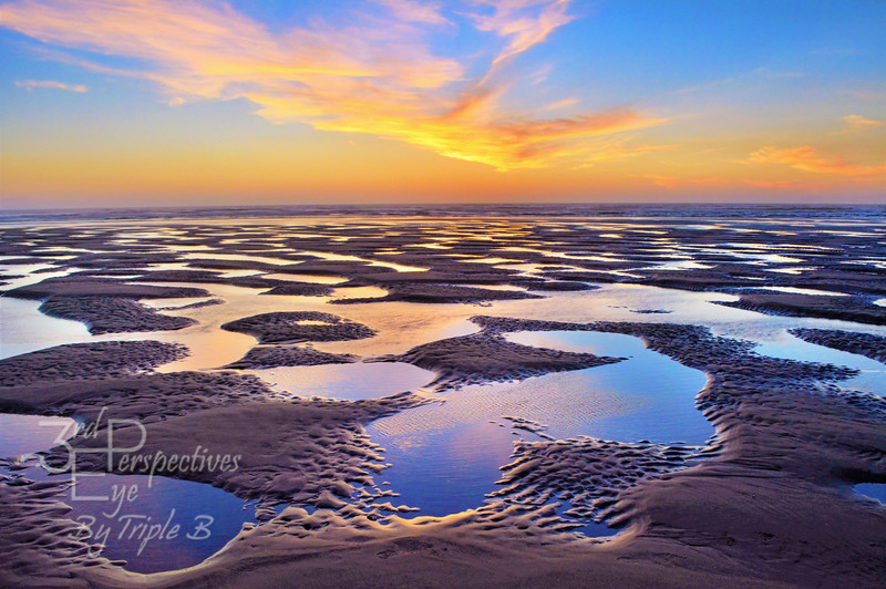 High Tide Impressions - Wakonda Beach, OR